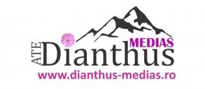 sigla-dianthus-c12